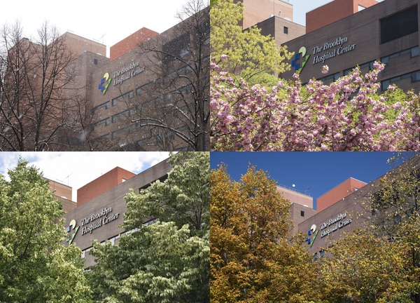 Brooklyn Hospital in Winter, Spring, Summer, Fall